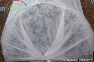 Frost fabric covering a microtunnel